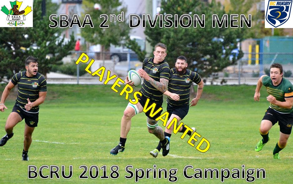 Div2campaing2018