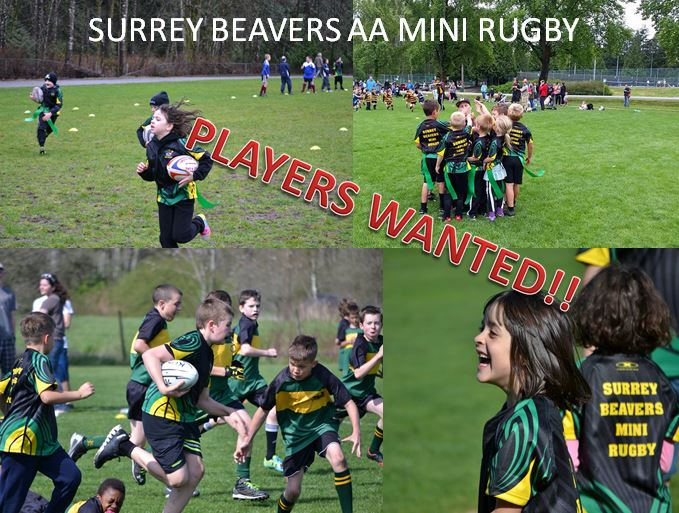 Mini Rugby Poster